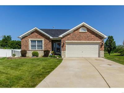 Single Family Home For Sale: 913 Sweet River Court
