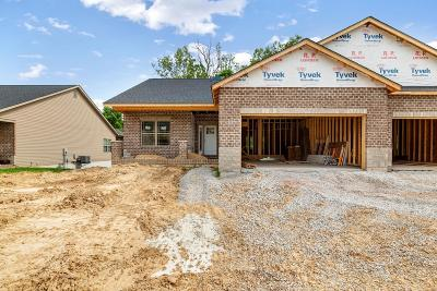 Caseyville New Construction For Sale: 8020 Villa Valley Lane