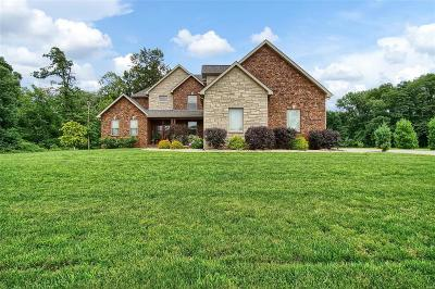 Troy Single Family Home For Sale: 461 Tyler Drive