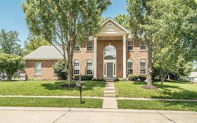 Chesterfield Single Family Home For Sale: 251 Lansbrooke
