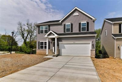 Single Family Home For Sale: 8721 Garden Rock Drive