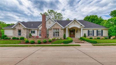 St Louis Single Family Home For Sale: 1033 Barberry Lane