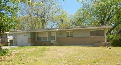 Single Family Home For Sale: 10730 Vorhof Drive