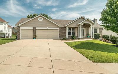 O'Fallon Single Family Home For Sale: 5 Briarmist