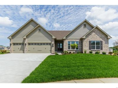 Wentzville Single Family Home For Sale: 327 Wilmer Valley Drive