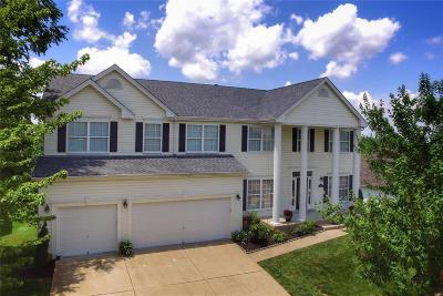 Chesterfield Single Family Home For Sale: 16706 Benton Taylor Drive