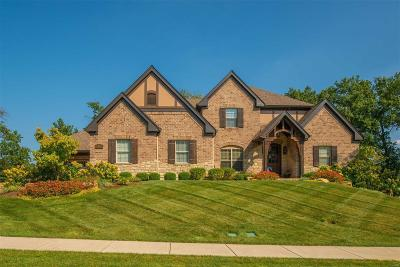 Creve Coeur Single Family Home For Sale: 111 North Mosley Road