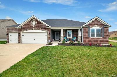 O'Fallon Single Family Home For Sale: 71 Bay Brook Court