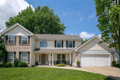 Chesterfield Single Family Home For Sale: 16735 Deveronne Circle
