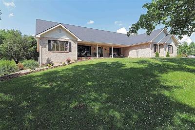 Farmington Single Family Home For Sale: 123 Meramec