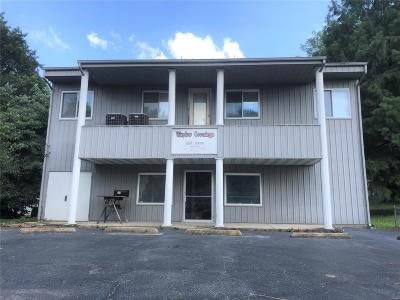 Caseyville Commercial For Sale: 14 North Main Street