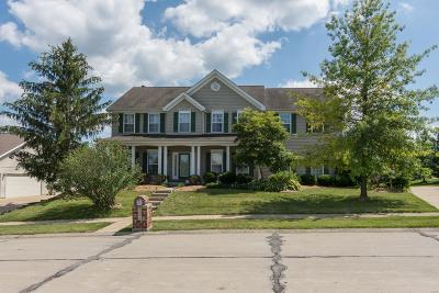 Wentzville Single Family Home For Sale: 202 Meadowbrook Hts