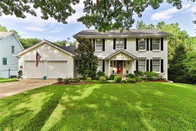 Single Family Home For Sale: 538 Ballas Trails Drive