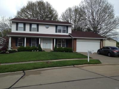 Florissant Single Family Home For Sale: 3610 Visson Court