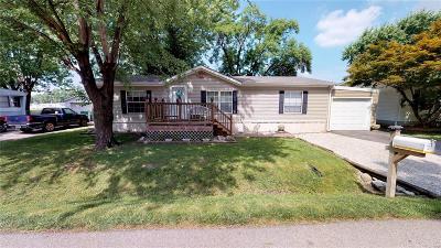 O'Fallon Single Family Home For Sale: 125 Saint Ellen Street
