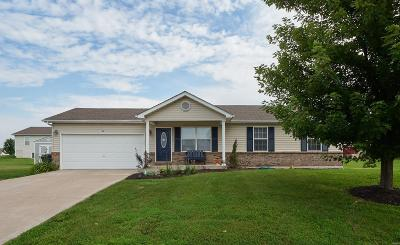 Wright City Single Family Home For Sale: 18487 Walnut Springs Court