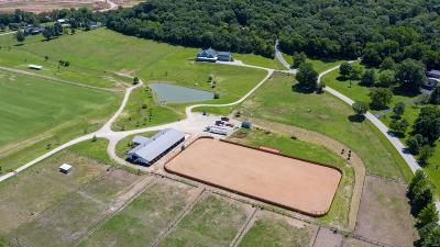 Jefferson County, Madison County, St Francois County Single Family Home For Sale: 96 High Trails