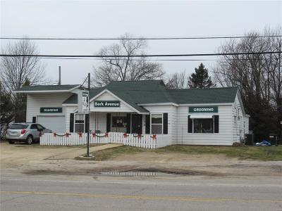 Sullivan Commercial For Sale: 173 East Springfield