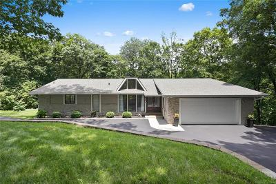Chesterfield Single Family Home For Sale: 17055 Rooster Ridge