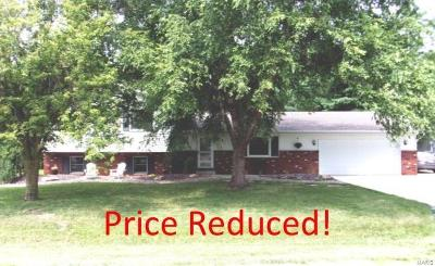 Highland Single Family Home For Sale: 4 Frisse Court