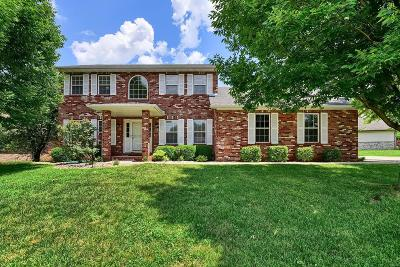 Swansea Single Family Home For Sale: 131 St Sabre Drive