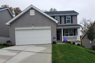 O'Fallon Single Family Home For Sale: 416 Dusty Brook Drive