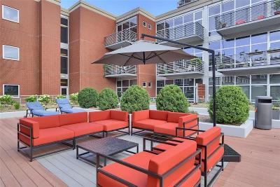 Central West End Condo/Townhouse Active Under Contract: 9 North Euclid Ave #304