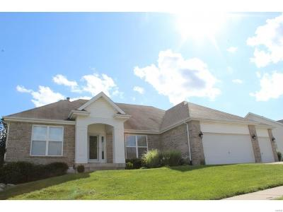 Wentzville Single Family Home For Sale: 44 Paige Court
