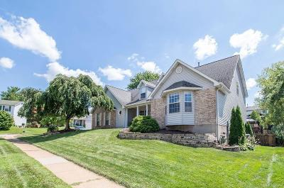 St Louis County Single Family Home For Sale: 2124 Telford Drive