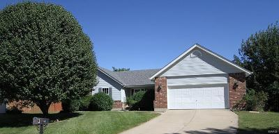 St Peters Single Family Home For Sale: 8200 Bristol Valley