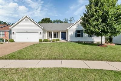 Wentzville MO Single Family Home For Sale: $280,000