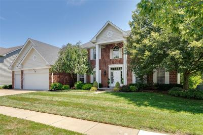 Chesterfield Single Family Home For Sale: 1272 Bluffview Ridge Drive