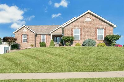 Wentzville Single Family Home For Sale: 2496 Bear Creek Drive
