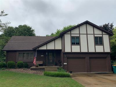 Granite City Single Family Home For Sale: 2528 Westmoreland Drive