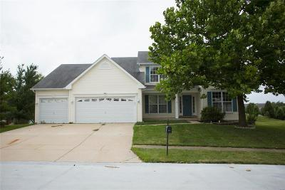 Wentzville Single Family Home For Sale: 305 Van Buren Drive