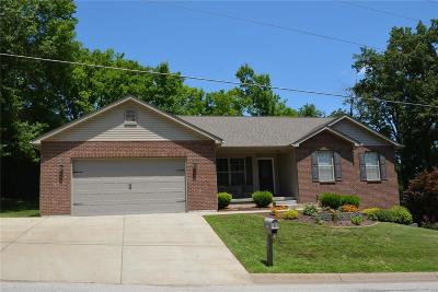 Franklin County Single Family Home For Sale: 5699 Steutermann Road
