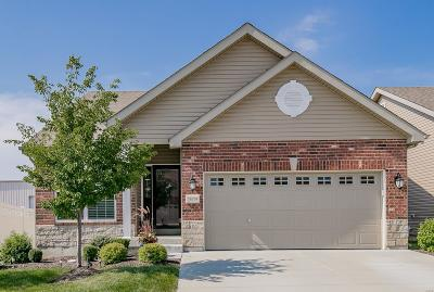 Ballwin Single Family Home For Sale: 16109 Amber Vista Drive