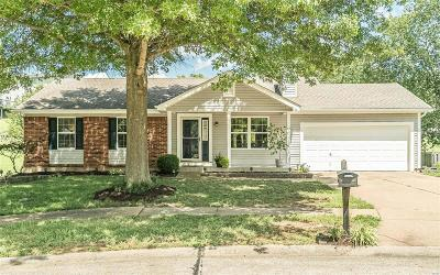 Single Family Home For Sale: 1406 Sand Dollar Circle