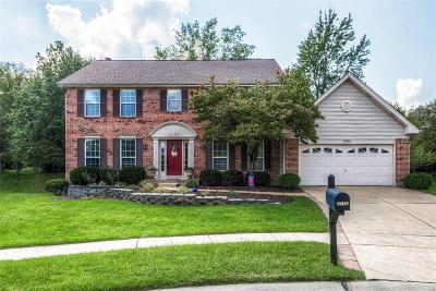 Wildwood MO Single Family Home For Sale: $359,900