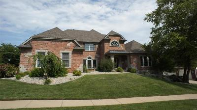 St Louis Single Family Home For Sale: 342 Greycliff Bluff Drive