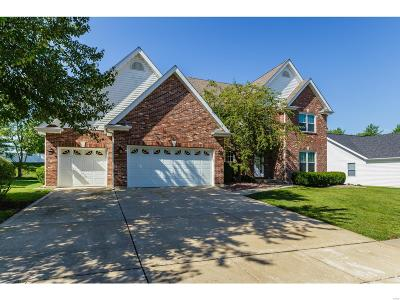 St Charles Single Family Home For Sale: 4079 Jacobs Landing