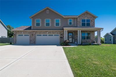 Belleville Single Family Home For Sale: 2667 London Lane