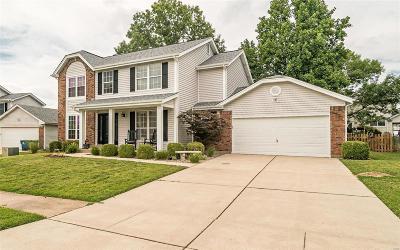 Single Family Home For Sale: 7551 Shadybridge Drive