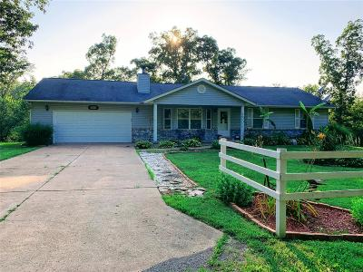 De Soto Single Family Home For Sale: 12615 Kimes