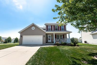 Fairview Heights Single Family Home For Sale: 6936 Arbor Cove Drive