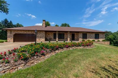 Festus Single Family Home For Sale: 114 Sunnybrook