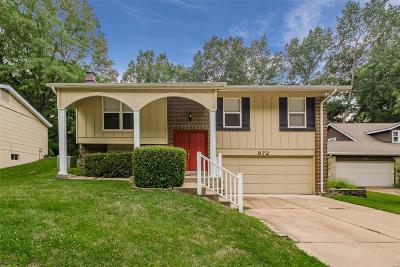 Ballwin Single Family Home For Sale: 872 Village Brook Court
