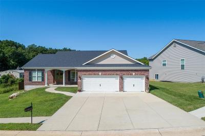 Barnhart Single Family Home For Sale: 1702 Springbrook Drive