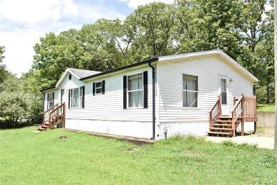 De Soto Single Family Home For Sale: 527 Shady Lane