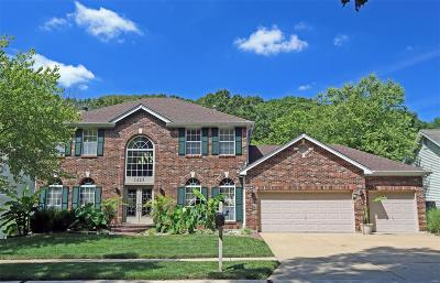 St Louis County Single Family Home For Sale: 1423 Richland Meadows Drive